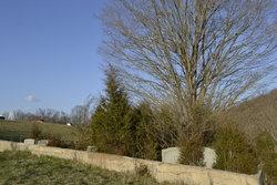 Strickler Cemetery