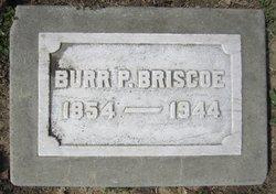 Burr Pacific Briscoe
