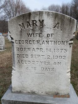 Mary A Anthony