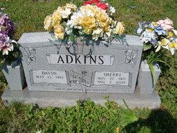 David Adkins
