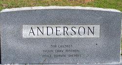 Bessie Lee <I>Lewis</I> Anderson