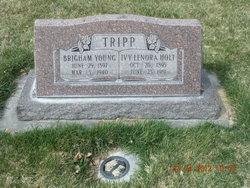 Brigham Young Tripp