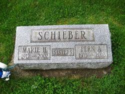 Fern Amanda Schieber