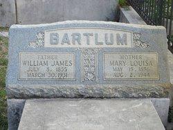 Mary Louisa <I>Pitcher</I> Bartlum