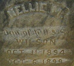 Nellie M. Wilson