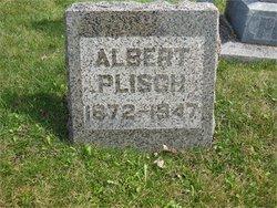 Albert Plisch