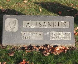 Anthony J Alisankus