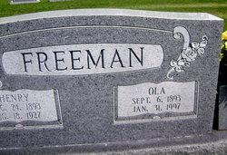 Henry Franklin Freeman