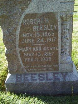 Mary Ann <I>Walker</I> Beesley