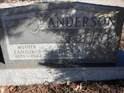 Arthur Alan Anderson