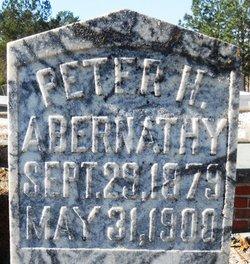 Peter H. Abernathy