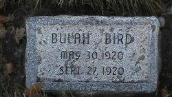 Bulah Bird