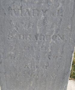 Mary J Bragdon