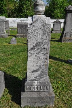 Dave L. Freedman