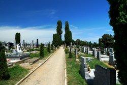 Satnica Dakovacka Cemetery