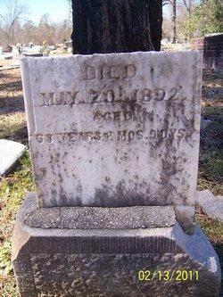 William Ellison Gill