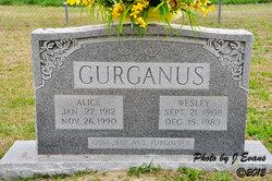 Alice <I>Parker</I> Gurganus