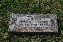 Myron E Hoesch