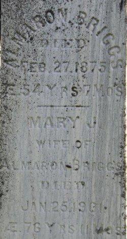 Mary Jane <I>Gibson</I> Briggs