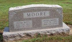 Dr David Ross Moore