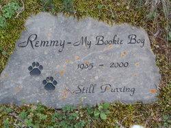 """Remmy """"My Bookie Boy"""""""