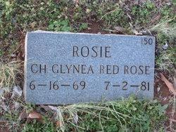 Rosie Ch Glynea Red Rose