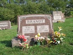 Mary A. Brandt