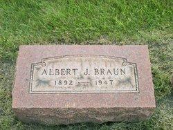 Albert John Braun