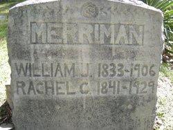 """William John """"Linkapee"""" Merriman"""
