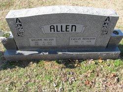 William Nelson Allen