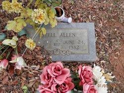Estell <I>Grounds</I> Allen