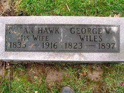 Susan <I>Hawk</I> Wiles