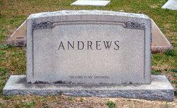 Annie Jane <I>Carter</I> Andrews