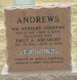 Emily A. <I>Amesbury</I> Andrews