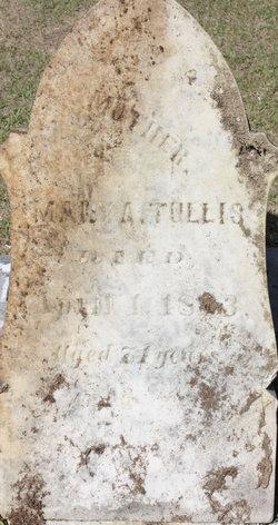 Mary Ann <I>Beall</I> Tullis