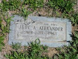 Judy A Alexander