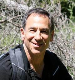 Stephen Wiel