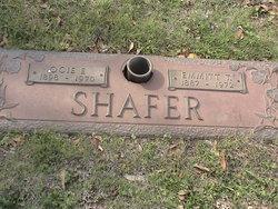 Thomas E Shafer