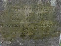 Elizabeth A <I>McCormick</I> Branyan