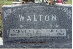 Harry B Walton