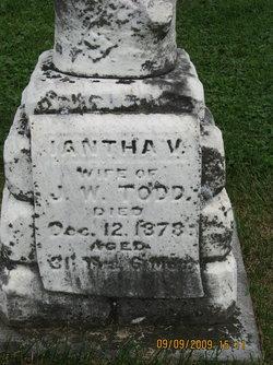 Iantha V <I>Cheeseman</I> Todd