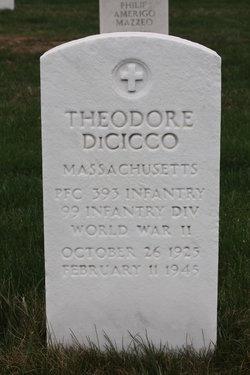 Theodore DiCicco