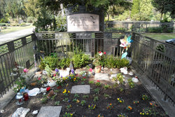 Community burial ground for Early And Stillborn Children