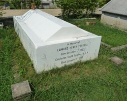 Edward Henry Strobel