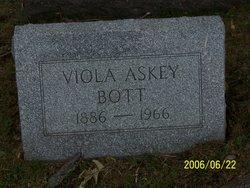 Viola <I>Askey</I> Bott