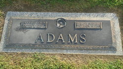 Shockley Colon Adams