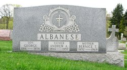 Andrew A. Albanese