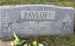 Alex Pavloff