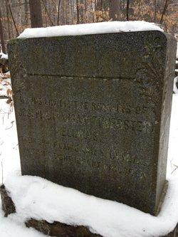 Margaret <I>Webster</I> Fellows