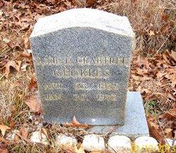 Susie E <I>Crabtree</I> Geckles